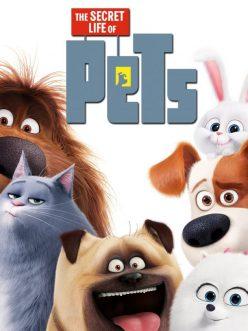 Evcil Hayvanların Gizli Yaşamı izle | Full Hd Tek Parça